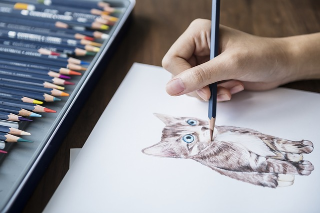 rysowanie kota na kartce